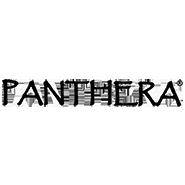 Panthera Gloves